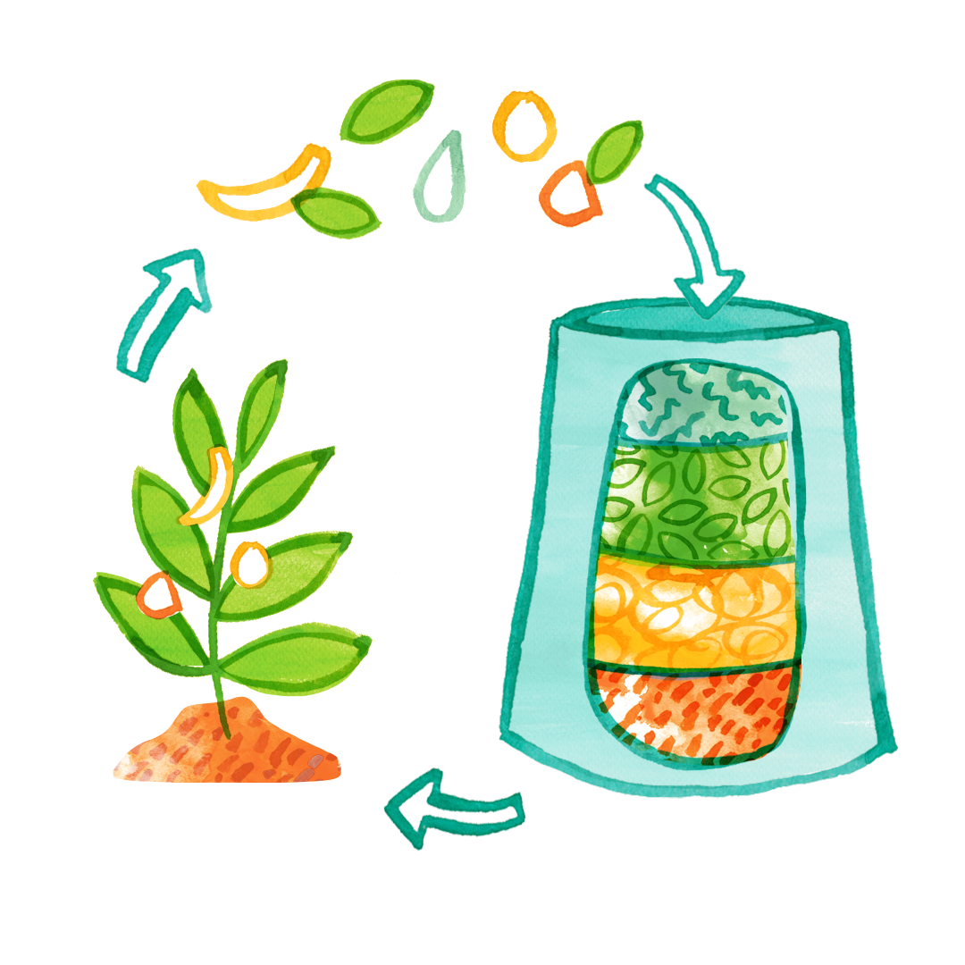 compost-circle-of-life-2